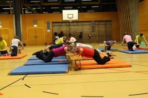 Fit-Gym 2014-5