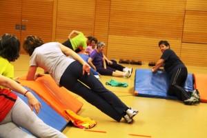 Fit-Gym 2014-7